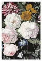 Baroque Botanica II Framed Print
