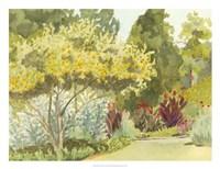 Plein Air Garden VI Fine Art Print
