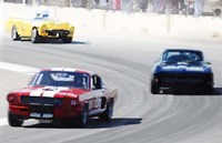 Mustang and Corvette Racing Fine Art Print