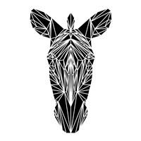 Black Zebra Fine Art Print