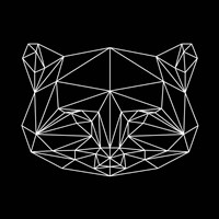 Black Raccoon Polygon Fine Art Print