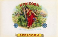 Africora Fine Art Print