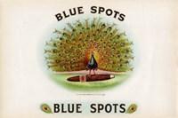 Blue Spots Fine Art Print