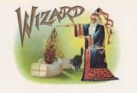 Wizard Fine Art Print