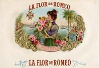 La Flor De Romeo Fine Art Print