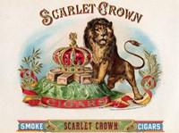 Scarlet Crown Fine Art Print