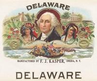 Delaware Framed Print