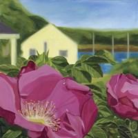 Beach Rose Fine Art Print