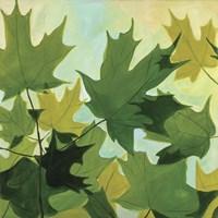 Summer Leaves Fine Art Print