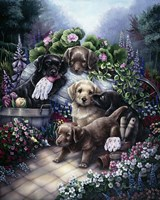 Gardening Puppies Fine Art Print