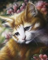 Buttercup Fine Art Print