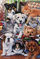 Country Pups and Kittens II Fine Art Print