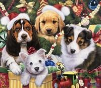 Puppy Surprise Fine Art Print