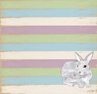 Rabbit Grey Framed Print