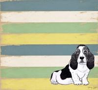 Basset Hound 2 Fine Art Print