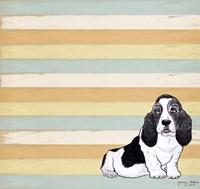 Basset Hound 1 Fine Art Print