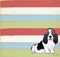 Basset Hound 3 Fine Art Print