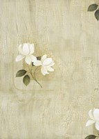 White Flowers 1 Framed Print