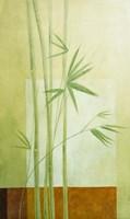 Reeds 1 Framed Print