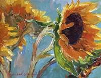 Sun5 Fine Art Print