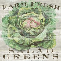 Farm Fresh Greens Fine Art Print