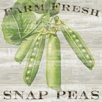 Farm Fresh Peas Fine Art Print