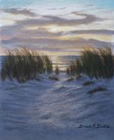 Shore Path Fine Art Print