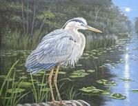 Blue Heron Moon Fine Art Print