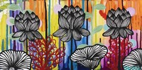 Colorful Lotus Fine Art Print