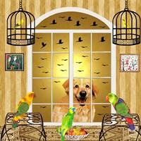 Bird Dogs IV Framed Print