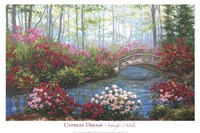 Cypress Dream Fine Art Print