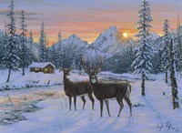 Whitetail & Cabin Fine Art Print