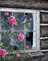 Roses & Bluebirds Fine Art Print