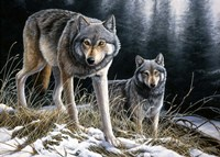 Over The Ridge Wolves Fine Art Print