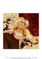 Fiori Iris Fine Art Print