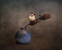 Little Sparrow Friend Fine Art Print