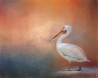 Pelican Walk Fine Art Print