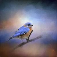 The Happiest Blue Fine Art Print