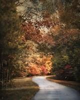Autumn Passage 1 Framed Print