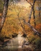 Autumn Riches 1 Framed Print