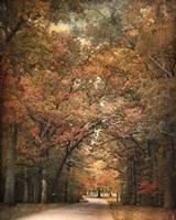 Grove Of Memories Fine Art Print