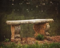 Waterside Bench Fine Art Print