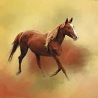 A Dash Of Chestnut Mare Fine Art Print