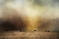 Where The Buffalo Roam Fine Art Print