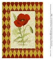Adorned Poppy 1 Fine Art Print