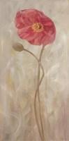 Poppies IV Fine Art Print