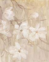 Magnolias I Fine Art Print