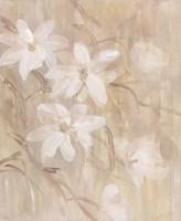 Magnolias III Framed Print