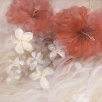 Hibiscus II Fine Art Print