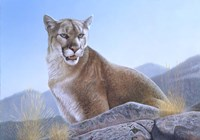 Mountain King Fine Art Print